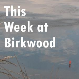 FP this week at Birkwood